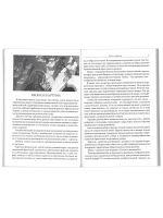 Зримая Истина. Книга о православной иконе для семьи и школы